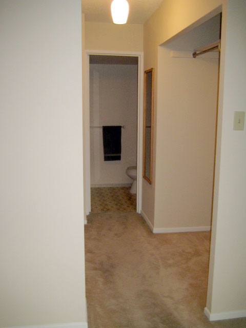 Master Bedroom Walk In Closet Ensuite Washroom
